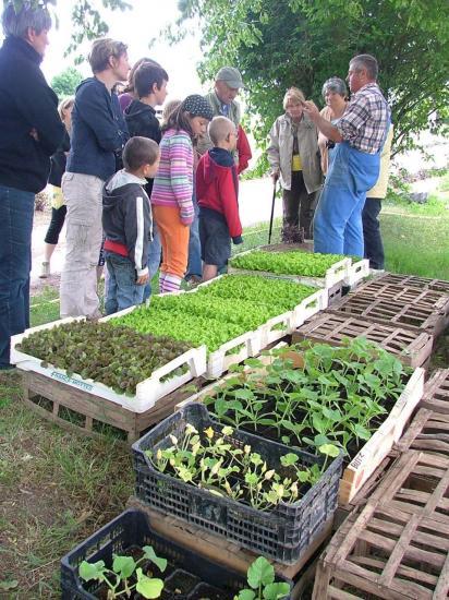 Patrick Noblet et ses plants de légumes : visite du 1er juin 2009.